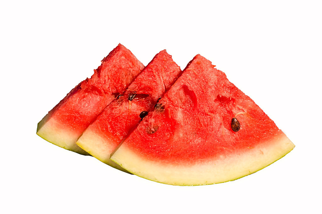 Can hamsters eat watermelon seeds online hamster care for What parts of a watermelon can you eat